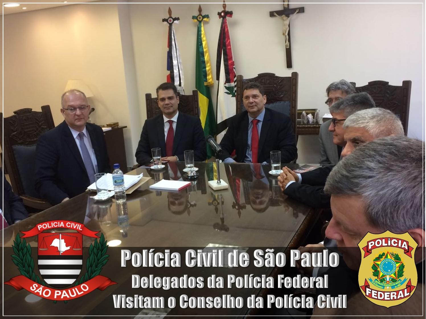 delegado da policia federal no conselho da policia civil