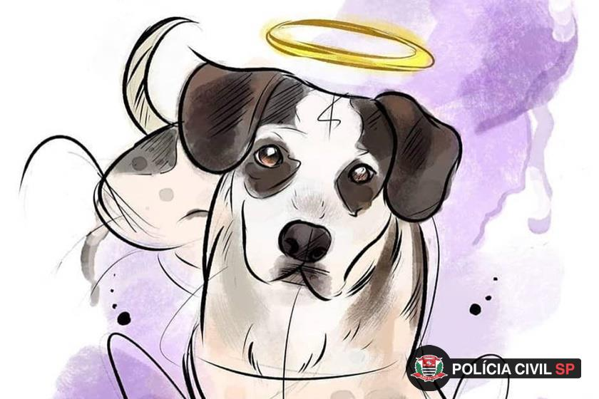 desenho do cão